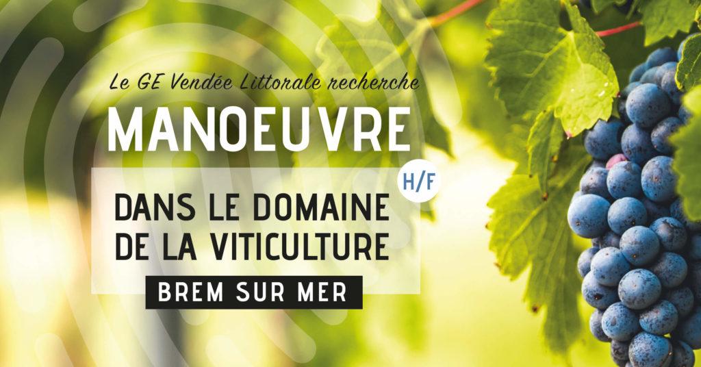 Offre d'emploi de Manoeuvre dans le domaine de la viticulture à Brel sur Mer du GE Vendée Littorale